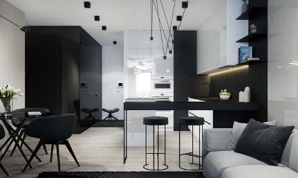 Căn hộ chung cư 2 phòng ngủ sang trọng trong tông màu trắng đen