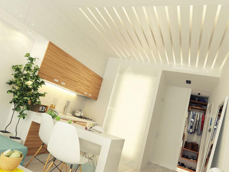 Căn hộ chung cư có diện tích 29m2 dành cho chàng độc thân