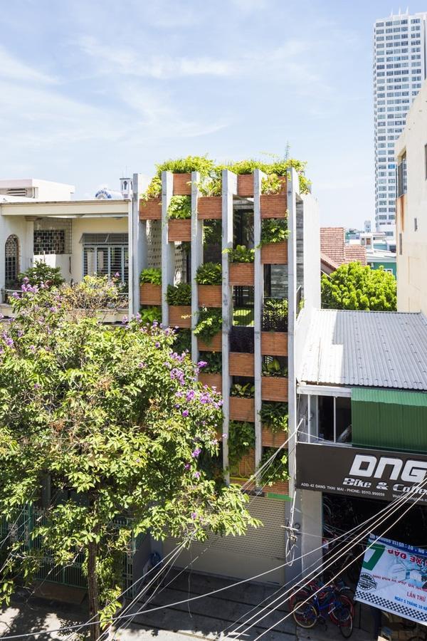 Ấn tượng với thiết kế mẫu nhà ống nhiều cây xanh giữa lòng đô thị - 01