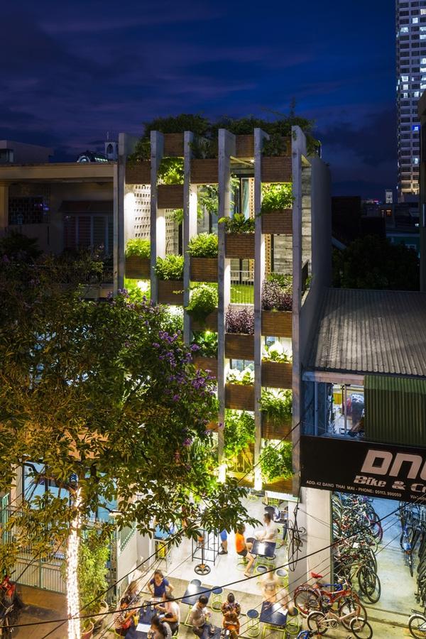 Ấn tượng với thiết kế mẫu nhà ống nhiều cây xanh giữa lòng đô thị - 02
