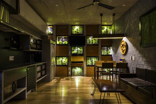 Ấn tượng với thiết kế mẫu nhà ống nhiều cây xanh giữa lòng đô thị - 06