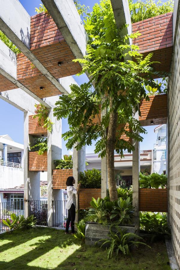 Ấn tượng với thiết kế mẫu nhà ống nhiều cây xanh giữa lòng đô thị - 11