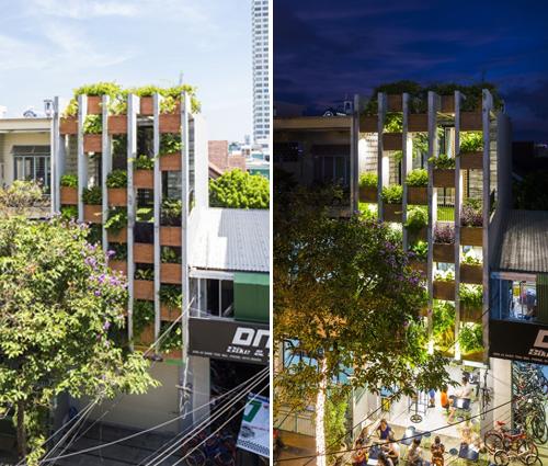 Ấn tượng với thiết kế mẫu nhà ống nhiều cây xanh giữa lòng đô thị