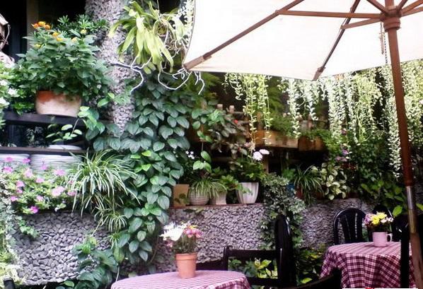 Hút mắt với thiết kế quán cà phê sân vườn nhỏ