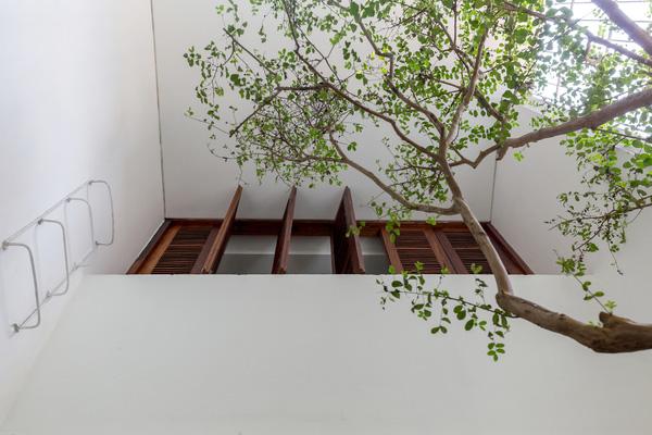 Mẫu thiết kế nhà phố đẹp nhiều cây xanh tươi mát cho gia đình - 04
