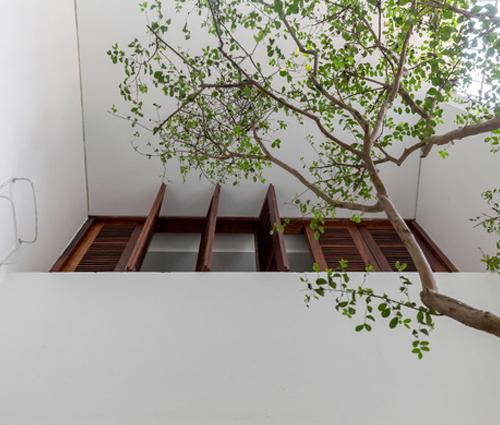 Mẫu thiết kế nhà phố đẹp nhiều cây xanh tươi mát cho gia đình