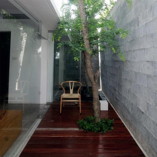 Ngây ngất với căn nhà cấp bốn ngập ánh sáng cho người yêu thiên nhiên