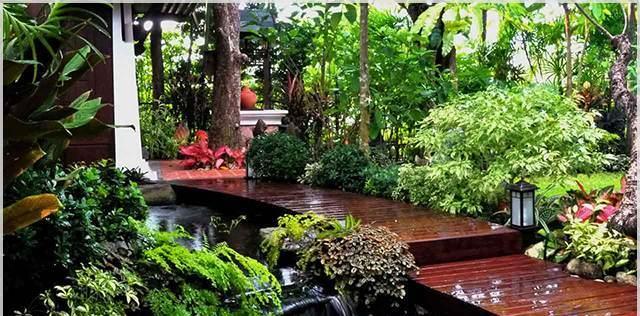 Ngôi biệt thự với khu vườn đẹp xao xuyến lòng người