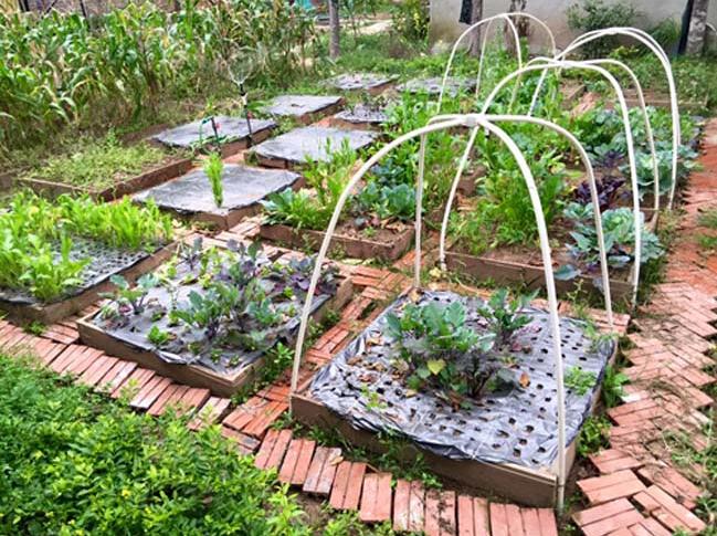 Thiết kế mẫu nhà trệt hình tròn độc đáo tại Láng – Hòa Lạc - 06