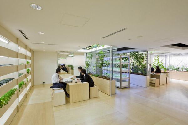 Thiết kế không gian xanh cho văn phòng làm việc thêm tươi mát - 06