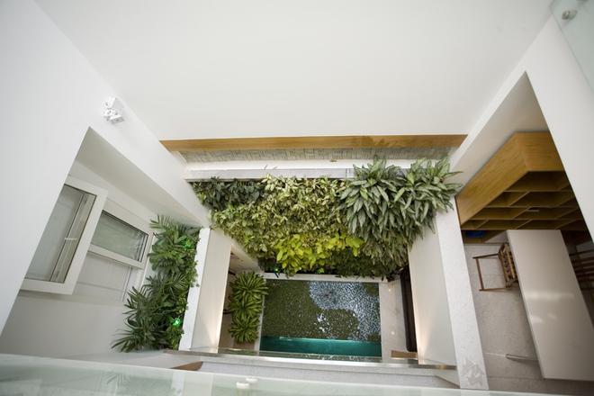 Thiết kế nhà ống đẹp tại Nam Định tràn ngập thiên nhiên - 06