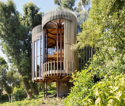 Choáng với ngôi nhà trên cây tiện nghi như khách sạn