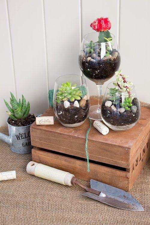 Khám phá khu vườn mini trang trí bên trong ly rượu cực xinh