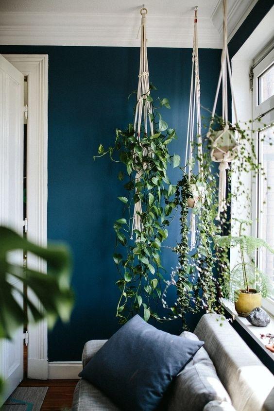 Làm đẹp không gian với cây xanh cực mát cực ấn tượng