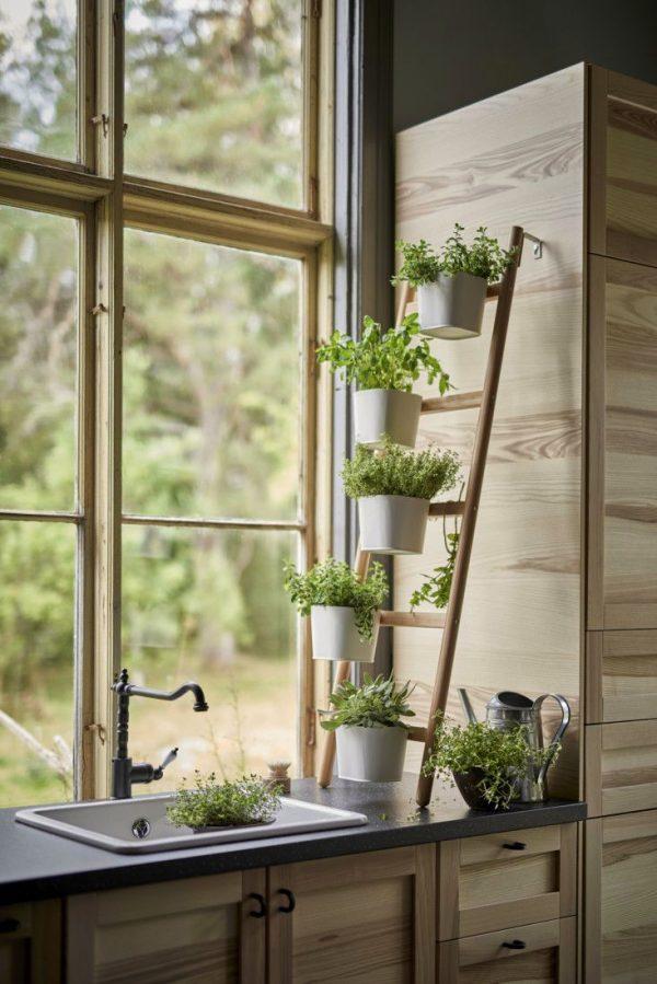 Thiên nhiên trú ngụ bên khung cửa sổ thổi sức sống vào nhà