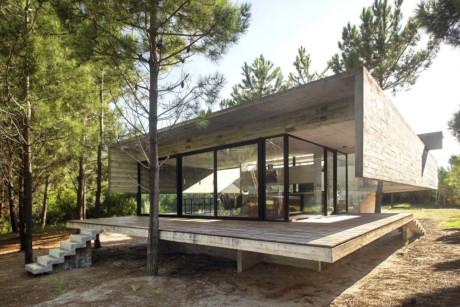 Khoảng cách với thiên nhiên hoàn toàn bị xóa bỏ với ngôi nhà giữa rừng thông này