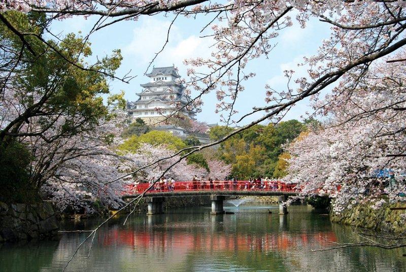 Trầm trồ trước vẻ đẹp thanh tao của lâu đài Himeji ở Nhật Bản - 01