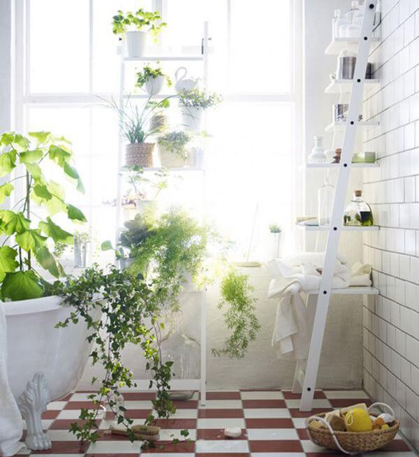 Ý tưởng thiết kế vườn cho nhà phố mặt tiền 5m luôn xanh mát