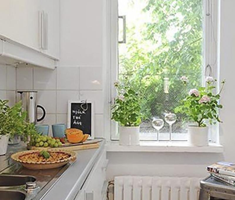 Làm đẹp bếp biệt thự 2 tầng mái thái với ý tưởng từ cây xanh bạn nên thử